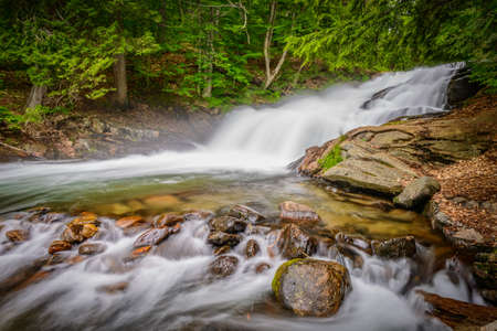 Fish Hatchery Falls are located near Ullswater Ontario Canada in the District of Muskoka. Imagens