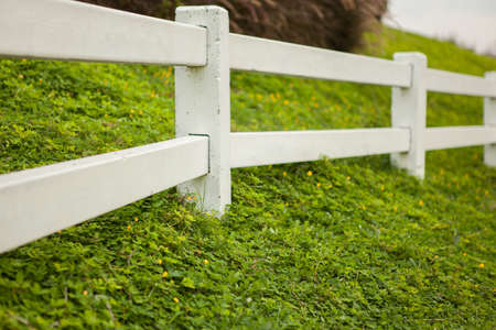 front or back yard: White fence on green grass