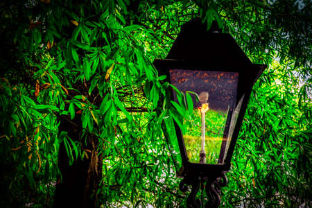 A gas lamp sits in the shade of trees at historic Occoquan, Virginia. Stock Photo