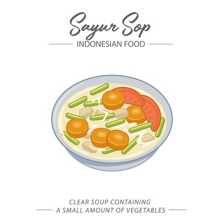 Vegetable soup that mostly eat in Indonesia is a clear soup that contains meat like chicken and beef, and various types of vegetables like carrot, tomato and long beans.