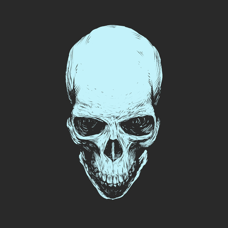 trashy: Skull illustration