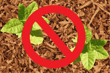 No tobacco illustration with two tobacco plants and a tobacco background