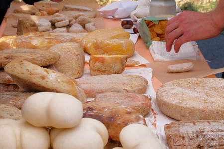 Diversity of varieties traditional domestic cheeses for sale on rural farming market. Cheese manufacture and sales in local markets.