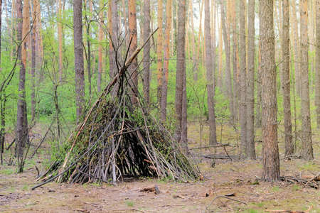 Primitive shelter from all natural materials. Forest hut in summer forest.