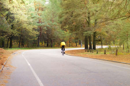 Cyclist in protective in autumn coniferous forest. Riding on bike on among many trees. Sport and active life concept. Healthy lifestyle. Sunny day. Stok Fotoğraf