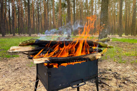 Firewood burns in grill, preparing coals for grilling. Barbecue on nature. Wood fire prepared for BBQ. Grilling season in coniferous forest.