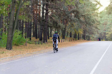 Sport and active life concept. Cyclist in protective. Riding on bike in coniferous forest on sunny day among many trees. Healthy lifestyle.
