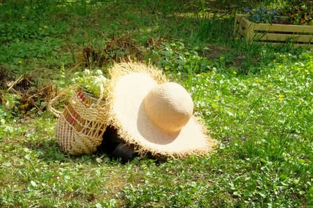 Straw hat and purse with flowers lie on the lawn in the spring park. Romantic nature walk concept. Фото со стока