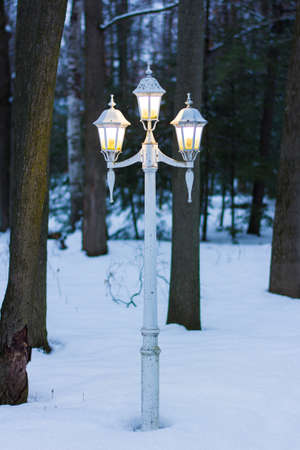 Vintage Lamp Post on a Winter Night in a Forest Stock Photo