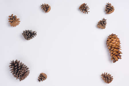 Pine Cones Flat Lay Top View on White Background Stock Photo