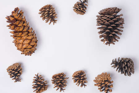 Pine Cone Frame Flat Lay Top View White Background