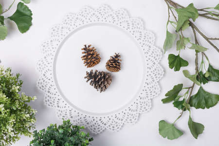 Pine Cones on Tray with Foliage Flat Lay Top View