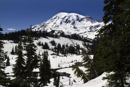 Mount Rainier National Park, Paradise Valley, snowy, in June on a clear day photo