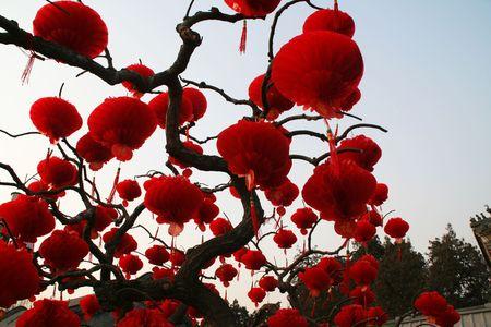 Red Plastic Chinese New Year Lanterns Ditan Park Beijing China Stock Photo - 2781197