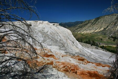 geological formation: Mammoth Hot Springs Lower Terrace, Yellowstone National Park, Wyoming