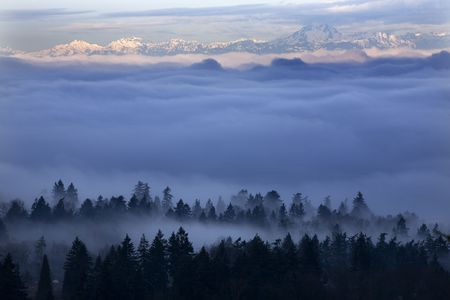 Fog Covers Seattle Washington with Olympic Mountains in Distance. Taken from Somerset, Bellevue, Washington in the morning