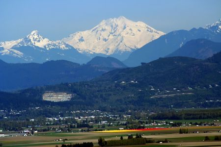 Snowy Mount Baker at Tulip time, Skagit County, Washington, Northwest