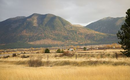 Farm Hills with Yellow Aspens Fall Colors and Yellow Grass Barbed Wire Fence Missoula Montana