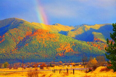 Montana Gold Abstract Rainbow Over Tamarack Trees Fall Missoula Montana Stock Photo