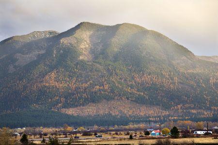 Farm Hills with Yellow Tamarack Trees Fall Colors Large Mountain Missoula Montana Stock Photo - 4075915