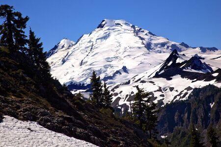 Mount Baker Evergreens from Artist Point Snow Mountain Washington State Pacific Northwest photo