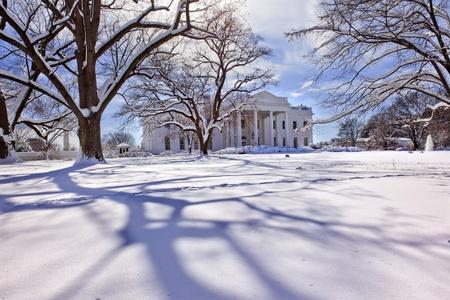 White House Trees After Snow Pennsylvania Ave Washington DC photo
