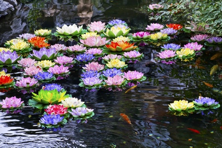 Carp Pond Colorful Artificial Water Lillies Jade Buddha Temple Jufo Si Shanghai China Most famous buddhist temple in Shanghai photo