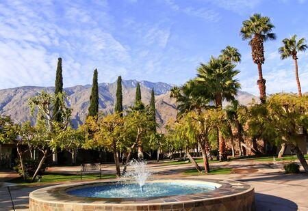 palm springs: Fan Palms Trees Blue Fountain Palm Springs California washingtonia filifera