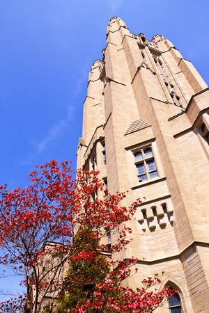 sheffield: Yale University Sheffield Scientific School Building Ornate Victorian Tower Flowering Dogwood New Haven Connecticut