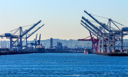 Seattle Washington Port with Red White Cranes Containers and Freighters Ships at Pier to Be Unloaded
