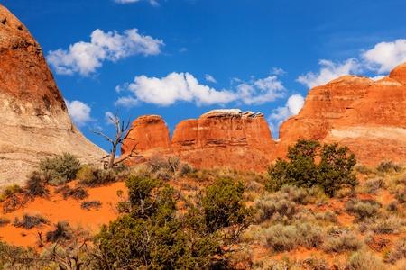 the devils garden: Rock Canyon Devils Garden Arches National Park Moab Utah USA Southwest   Stock Photo