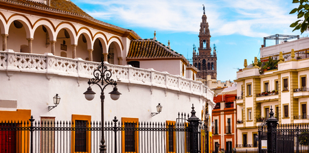 bull fight: Bull Fight Ring Stadium Cityscape Giralda Spire Bell Tower, Seville Cathedral Andalusia Spain