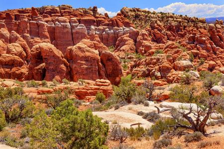 hoodoos: Fiery Furnace Red Orange Hoodoos Rock Canyon Arches National Park Moab Utah USA Southwest