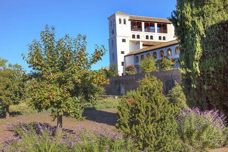 naranja arbol: Generallife Alhambra White Palace Orange Tree Garden Granada Andaluc�a Espa�a Foto de archivo