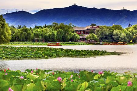 people's cultural palace: Pink Lotus Pads Garden Boat Buildings Summer Palace Beijing China