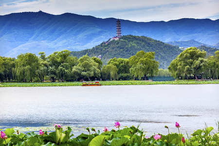 people's cultural palace: Pink Lotus Pads Garden Boat Buildings Yue Feng Pagoda Summer Palace Beijing China