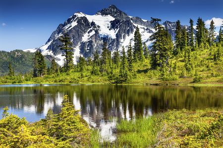 evergreens: Picture Lake Evergreens Mount Shuksan Mount Baker Highway Snow Mountain Trees Washington Pacific Northwest USA Stock Photo