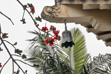 bell bronze bell: Red Bombax Ceiba Kapok Cotton Flower Guangzhou City Flower Bronze Bell Sun Yat-Sen Memorial Guangzhou City Guangdong Province China.  Sun Yat-Sen Stock Photo