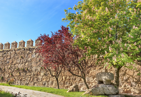 conquer: Ancient Bull Statue Verraco Castle Walls Swallows Avila Castile Spain.  Described as the most 16th century town in Spain.  Walls created in 1088 after Christians conquer and take the city from the Moors.  Bull States created in 200BC.