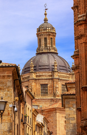 commissioned: Stone Street Apartments Dome New Salamanca Cathedral Spain.  New Cathedral was built from 1513 to 1733 and commissioned by Ferdinand V of Castile, Spain.