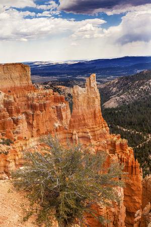 hoodoos: Hoodoos Bryce Point Bryce Canyon National Park Utah