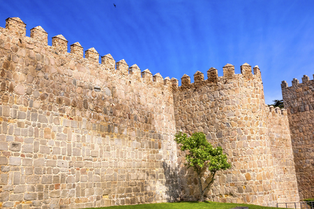 described: Avila City Castle Walls Turret Swallws Castile Spain.  Avila described as the most 16th century town in Spain.  Walls created in 1088 after Christians conquer  Moors Editorial