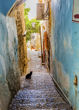 synagogues: Old Stone Street Alleyway Black Cat Safed Tsefat Israel  Many famouse synagogues located in Safed. Stock Photo