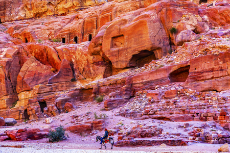 Donkey Rose Red Rock Tombs Afternoon Street of Facades Petra Jordan.  Built by the Nabataens in 200 BC to 400 AD.  Rose Red canyon walls create many abstracts close up.  Inside the Tombs, the rose red can become blood red.  Reds are created by magnesium i