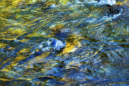 South Fork Snoqualme River Abstract Snoqualme Valley Trail North Bend Washington