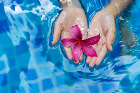 Female Childs hands holding a pink flower while floating on a pool water Stock Photo