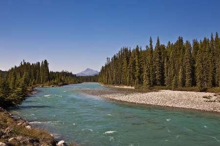 Bow River - Banff National Park - Alberta - Canada