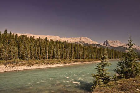 Bow River - Banff National Park - Alberta - Canada Stock Photo - 6751460