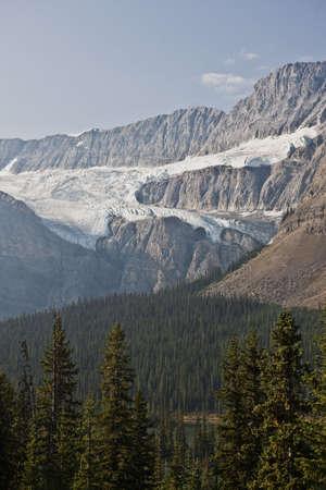 Icefield - Jasper National Park - Alberta - Canada Stock Photo - 6751571
