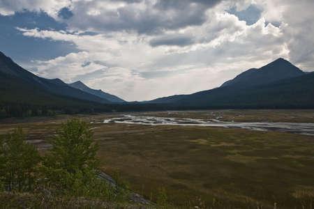 Near Maligne Lake - Jasper National Park - Alberta - Canada